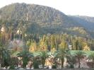 Наша поездка в Абхазию_119
