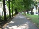 Наша поездка в Абхазию_268